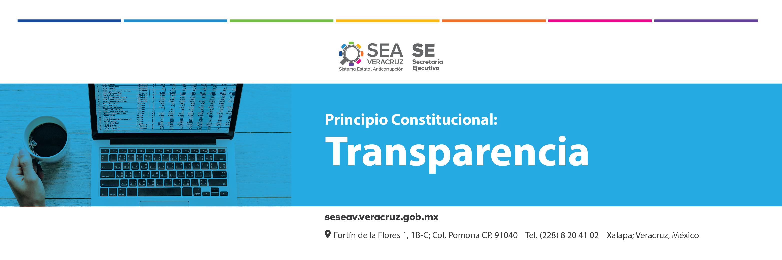 SESEAV-SLDR-PRINCIPIOCONSTITUCIONAL-TRANSPARENCIA-01