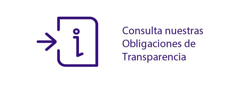 Obligaciones de Transparencia SESEAV