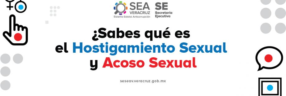 SEA-021-08-31-SD-HOSTIGAMIENTOYACOSO-01